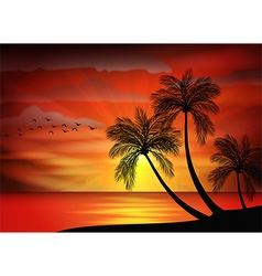 Sunset background with bird and pa vector