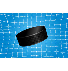 goal - a hockey puck in the net vector image