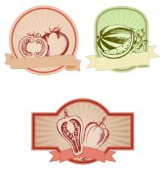 set of colored vintage labels vector image