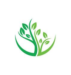 tree logo image vector image