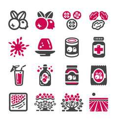 cranberry icon vector image