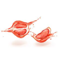 grapefruit in juice splashes set half and quarter vector image