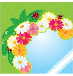 ladybirds and daisies - summer card vector image