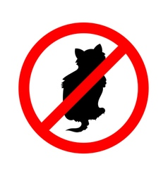 No cats sign do not allowed on white background vector image