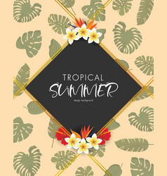 tropical summer frame design background vector image