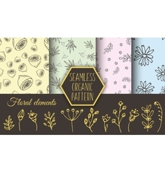 Herbs and wild flowers seamless patterns vector image vector image