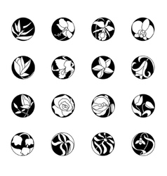 Set with round floral icons Black and white vector image vector image