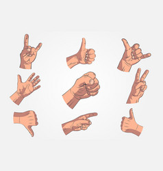 set of realistic hands - gestures hand painted vector image