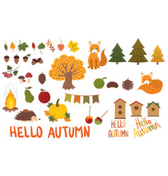 a set of autumn elements collection of autumn vector image