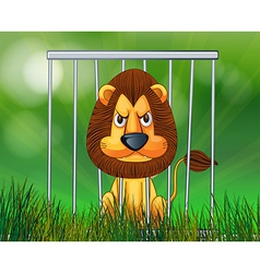 A scary lion inside the cage vector image
