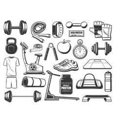 Fitness sport and gym tools exercise equipment vector