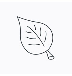 Leaf icon Natural eco sign vector image