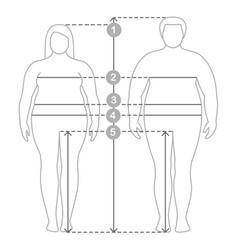 man and women clothes plus size measurements vector image