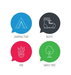 Maple tree camping tent and hiking boots vector image