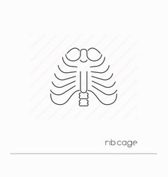 rib cage icon isolated vector image