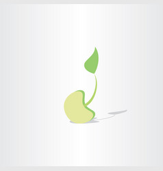 Seed growth icon design vector