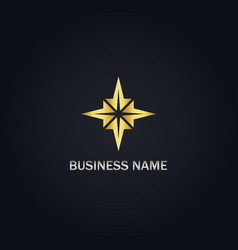 star geometry gold logo vector image