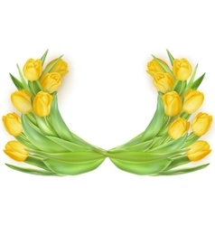 tulips in shape heart eps 10 vector image