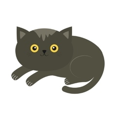 Cute lying gray cartoon cat with moustache whisker vector image vector image