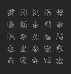 Allergy cause chalk white icons set on black vector