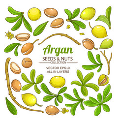 Argan elements set vector