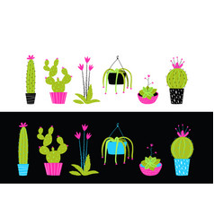 cacti cactus and succulent flowers interior vector image