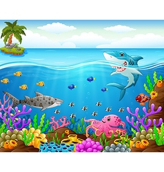 cartoon shark under the sea vector image