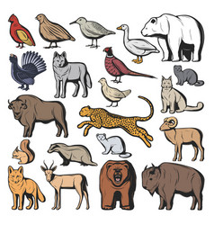 forest and safari animals hunting sport vector image