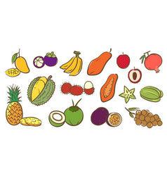 mix tropical fruits collection cute colorful vector image