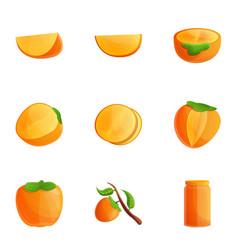 Persimmon icon set cartoon style vector
