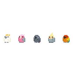 Pixel birds vector