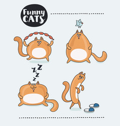 set cute cat stickers in various poses cartoon vector image