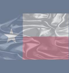 Texas silk flag vector