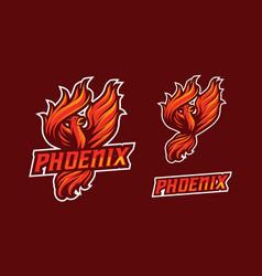 phoenix mascot logo design vector image