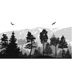 pine forest landscape background vector image
