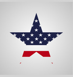 usa star sign vector image