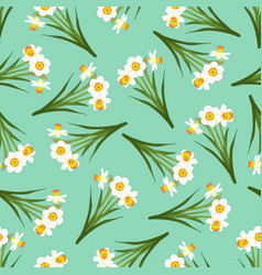 white daffodil - narcissus seamless on green mint vector image