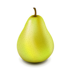 Yellow pear isolated vector
