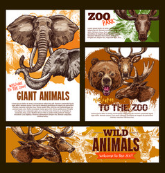 zoo sketch poster wild giant animals vector image