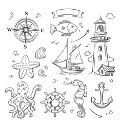 hand drawn sea marine objects and ocean animals vector image vector image