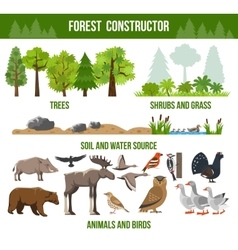 Forest Constructor Poster vector image vector image