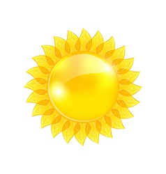 Abstract sun isolated on white background vector image vector image