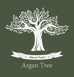 Argania tree or argan fruit plant vector