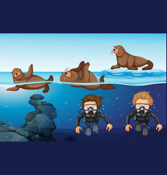 divers and seals in the sea vector image