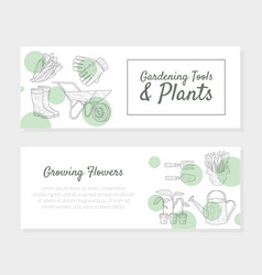 gardening tools and plants growing flowers vector image