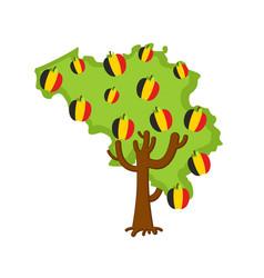 Patriotic apple tree belgium map apples belgian vector