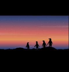 Penguin on hill scenery of silhouettes vector
