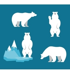 Polar Bears collection Funny cartoon character vector