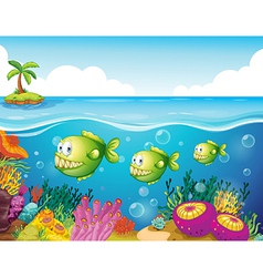 Three green piranhas under the sea vector image