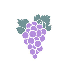 a bunch of purple grapes icon design vector image